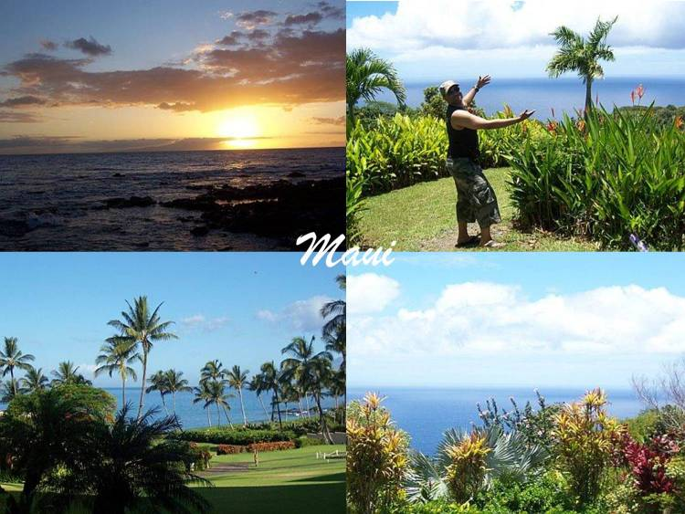 Maui (Hawaii)